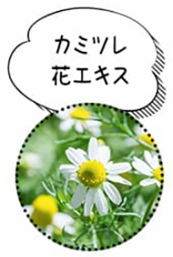 カミツレ花エキス